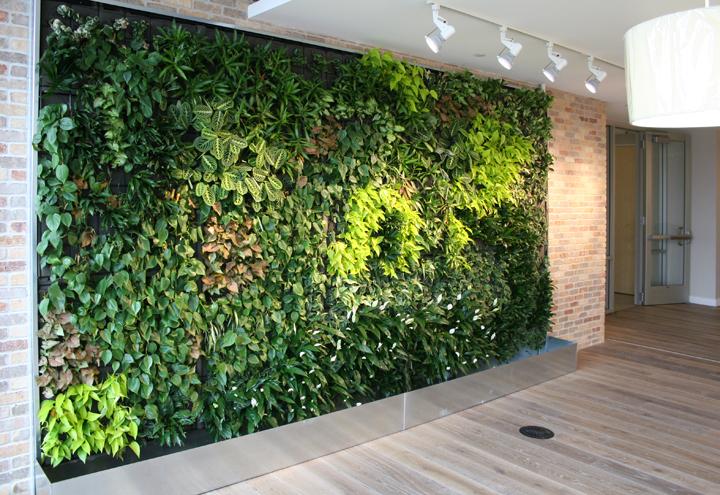 Zielone Ściany i Dachy